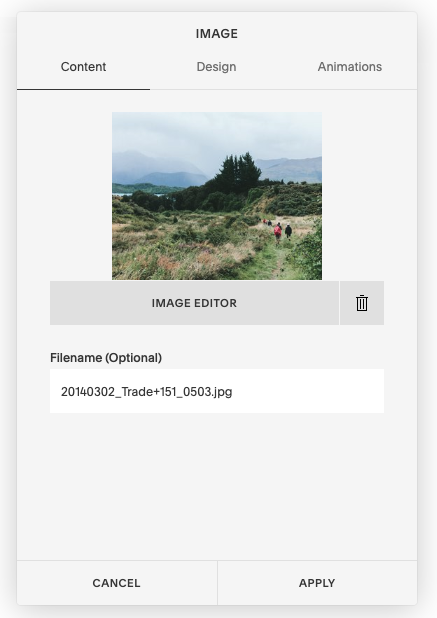 Squarespace Image dialog, showing Filename (Optional) field