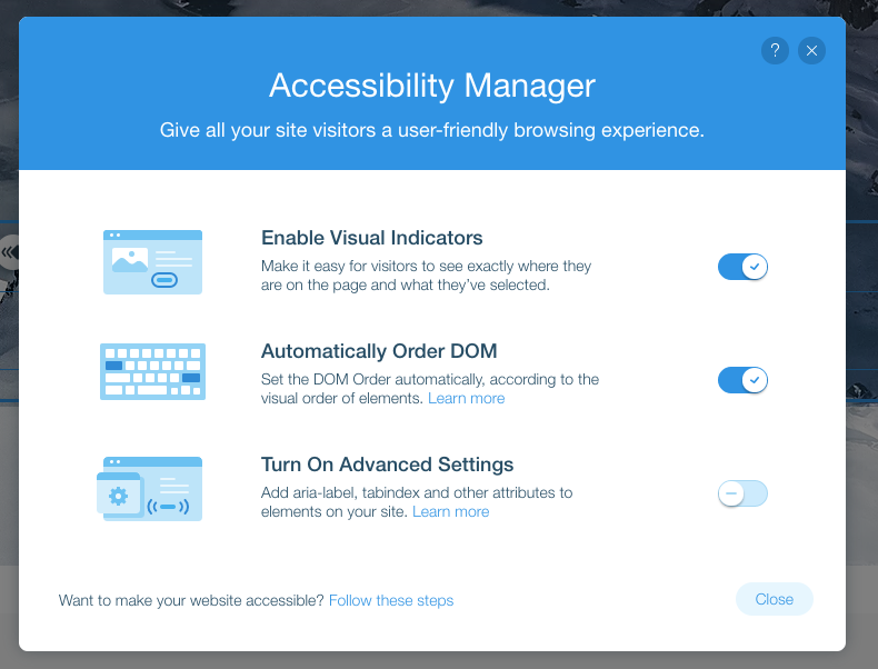 Wix Accessibility Manager dialog