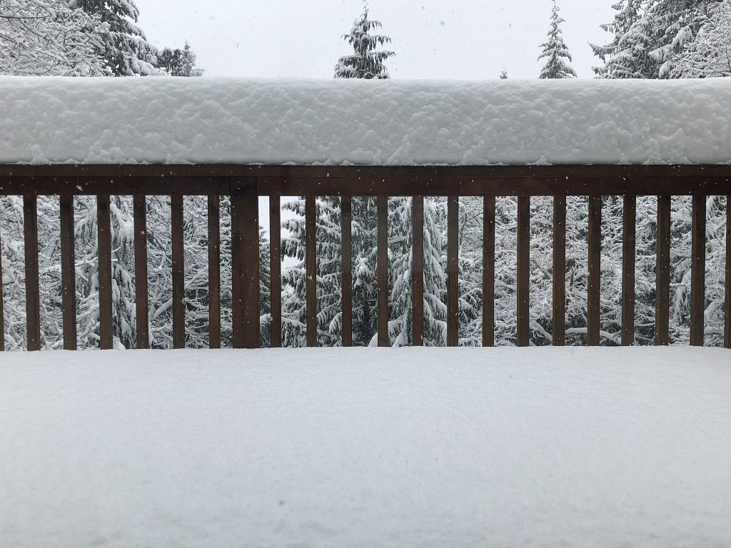 14 inches of snow piled high on Terrill's deck